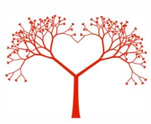 Apoteka Plus veza između srca i mozga