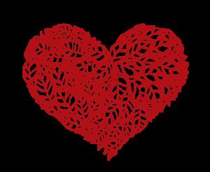 Apoteka Pllus zaštitite svoje srce